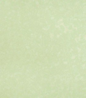 Papel pintado Bloom 55323
